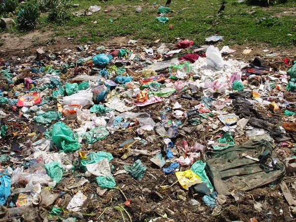essay on polythene bags pollution Plastic pollution in india essays plastic products exist as various kinds of forms  all over the planet because of its convenience however, plastic made from.
